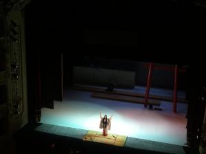 Cellia Costea, Madama Butterfly, Teatro Sociale di Como, 11/01/2015